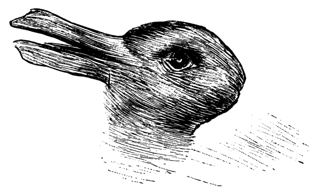 Do you see a duck or a rabbit: what is aspect perception?